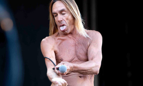 IggyPop02IOWAW120611.article_x4