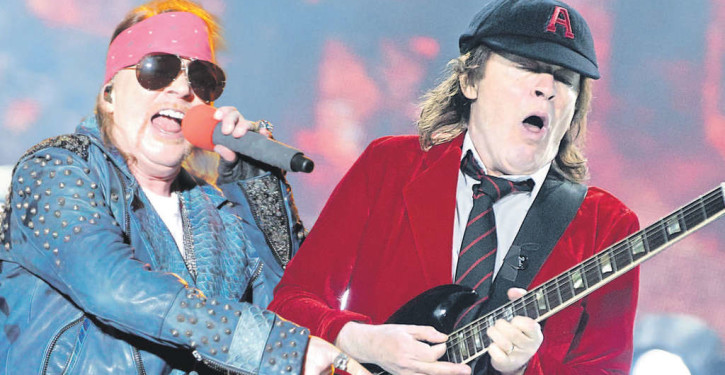 angus-young-rose